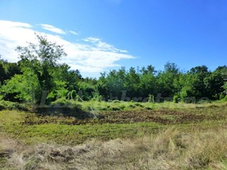 Zemljište - Prodaja - ISTARSKA - BARBAN - GLAVANI