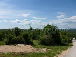 Land - Sale - ISTARSKA - LABIN - RIPENDA KOSI