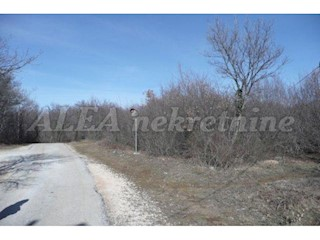 Land - Sale - ISTARSKA - LABIN - VINEŽ