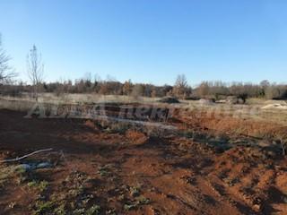 Grundstück - Verkauf - ISTARSKA - RAŠA - TOPID