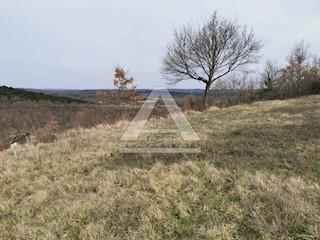 Zemljište - Prodaja - ISTARSKA - GROŽNJAN - GROŽNJAN