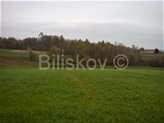 Zemljište - Prodaja - ZAGREBAČKA - PISAROVINA - DVORANCI