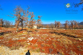 Zemljište - Prodaja - ISTARSKA - BUJE - KAŠTEL