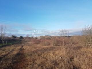 Zemljište - Prodaja - ISTARSKA - RAŠA - TOPID