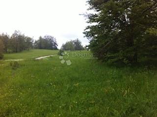 Grundstück - Verkauf - PRIMORSKO-GORANSKA - DELNICE - DELNICE
