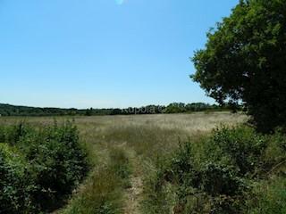 Zemljište - Prodaja - ISTARSKA - KANFANAR - BARAT