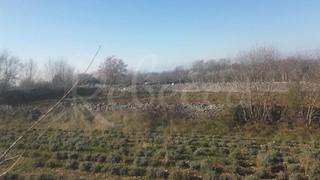 Zemljište - Prodaja - ISTARSKA - KANFANAR - MARIĆI