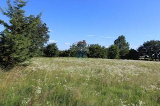 Zemljište - Prodaja - ISTARSKA - VIŽINADA - BALDAŠI