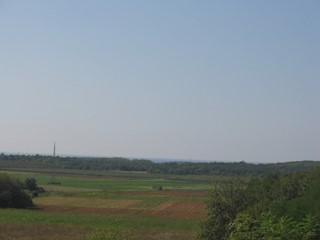 Land - Sale - ISTARSKA - VIŽINADA - BALDAŠI
