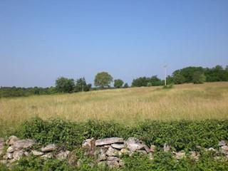 Zemljište - Prodaja - ISTARSKA - TINJAN - TINJAN