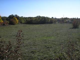 Grundstück - Verkauf - ISTARSKA - PULA - PULA