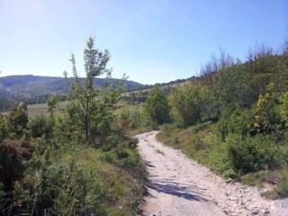Zemljište - Prodaja - PRIMORSKO-GORANSKA - RAVNA GORA - STARI LAZ