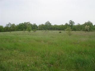 Land - Sale - ISTARSKA - SVETVINČENAT - SVETVINČENAT