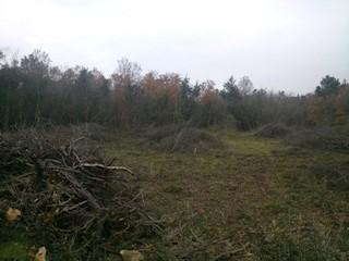Grundstück - Verkauf - ISTARSKA - MEDULIN - MEDULIN