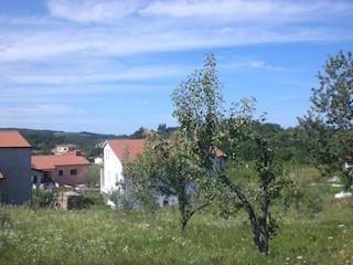 Grundstück - Verkauf - ISTARSKA - VIŽINADA - VIŽINADA