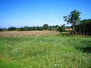 Grundstück - Verkauf - ISTARSKA - POREČ - BADERNA
