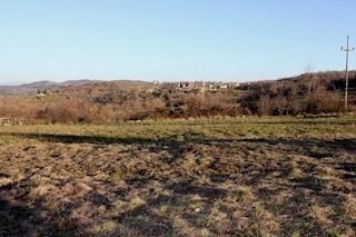 Grundstück - Verkauf - ISTARSKA - MOTOVUN - MOTOVUN