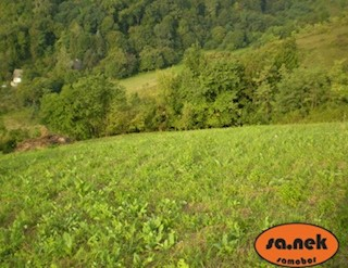 Zemljište - Prodaja - ZAGREBAČKA - SVETA NEDJELJA - SVETA NEDELJA