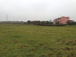 Grundstück - Verkauf - ISTARSKA - MARČANA - LOBORIKA