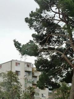 Flat - Sale - ISTARSKA - PULA - PULA