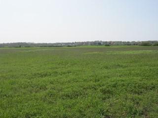 Grundstück - Verkauf - ISTARSKA - UMAG - UMAG