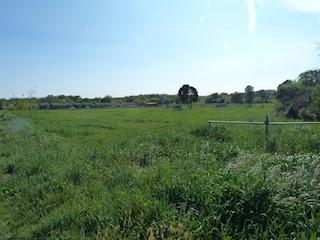 Land - Sale - ISTARSKA - VODNJAN - GALIŽANA