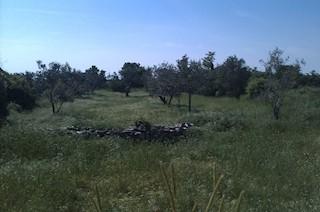 Grundstück - Verkauf - ISTARSKA - VODNJAN - GALIŽANA