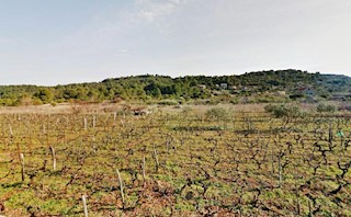 Grundstück - Verkauf - SPLITSKO-DALMATINSKA - VIS - DRAČEVO POLJE