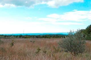 Land - Sale - ISTARSKA - TAR-VABRIGA - TAR