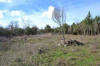 Grundstück - Verkauf - ISTARSKA - SVETI LOVREČ - STRANIĆI KOD LOVREČA