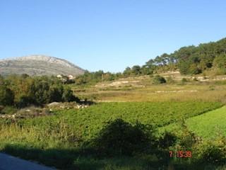 Grundstück - Verkauf - DUBROVAČKO-NERETVANSKA - TRPANJ - TRPANJ