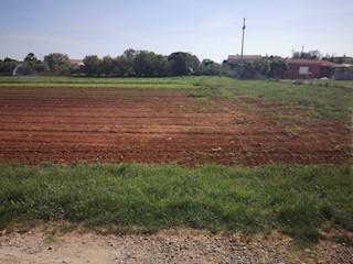 Zemljište - Prodaja - ISTARSKA - LIŽNJAN - ŠIŠAN