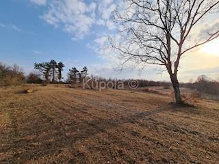 Zemljište - Prodaja - ISTARSKA - ŽMINJ - ŽMINJ