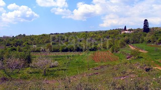 Zemljište - Prodaja - ISTARSKA - BUZET - PRAČANA